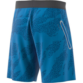 adidas P.Blue SH Tech Shorts Heren, sharp blue